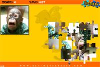 Jig Saw Puzzle - Monkey Icon