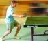 Table Tennis Πινγκ Πονγκ Icon